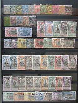 Stamp French Colonies French Establishments In India, Lot Nine Tbe
